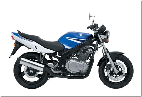 2009-Suzuki-GS500a-small