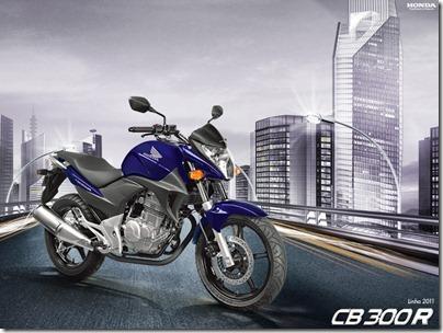 cb300-2011-1