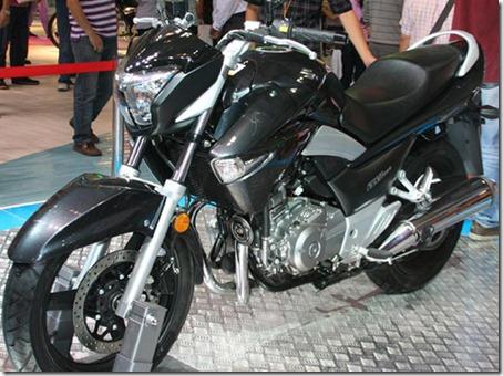 Suzuki_GW250_1
