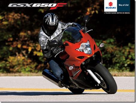 GSX650F_2011_1