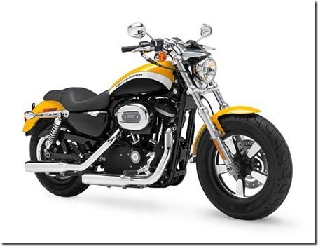 2011-harley-davidson-1200-custom-2