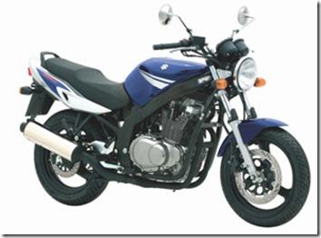 GS500-2008