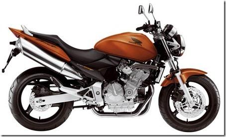 Hornet-laranja-2007_web