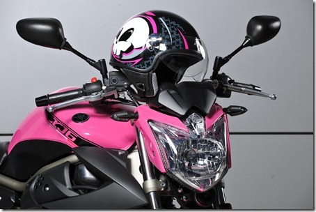 xj6-rosa-3